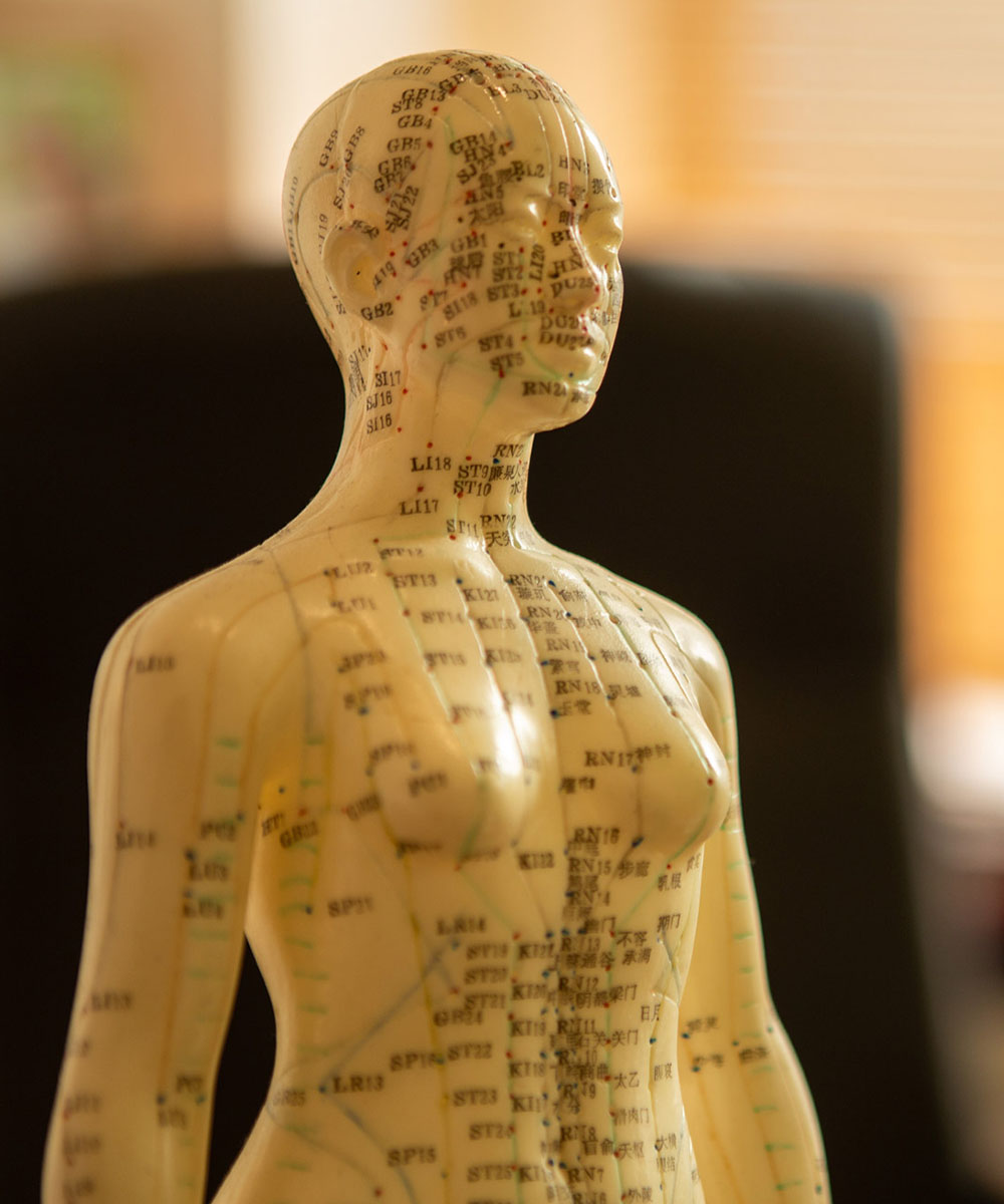 Akupunkturmodell mit Meridianen - Akupunktur nach TCM in Köln